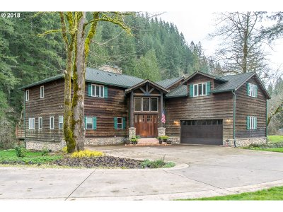 Washougal Single Family Home For Sale: 22 Cherrywood Ln