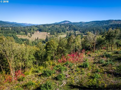 Camas, Washougal Residential Lots & Land For Sale: Mt Pleasant Rd