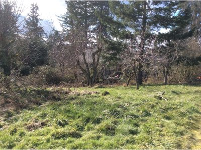 Molalla Residential Lots & Land For Sale: 36902 S Hibbard Rd