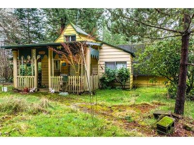 Battle Ground Single Family Home For Sale: 22509 NE Allworth Rd