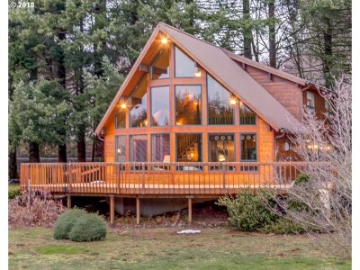 Washougal Single Family Home For Sale: 39108 SE Nichols Hill Rd