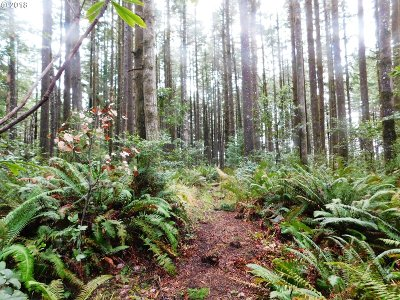 Port Orford Residential Lots & Land For Sale: Cemetery Loop