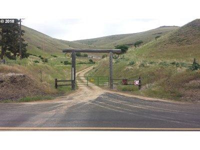 Umatilla County Single Family Home For Sale: 64273 E Birch Creek Rd