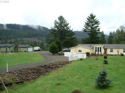 Washougal Single Family Home For Sale: 104 SE 412th Ave