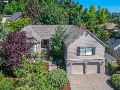 Single Family Home For Sale: 13595 SW Packard Ln