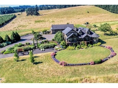 Newberg Single Family Home For Sale: 20300 NE Highway 240