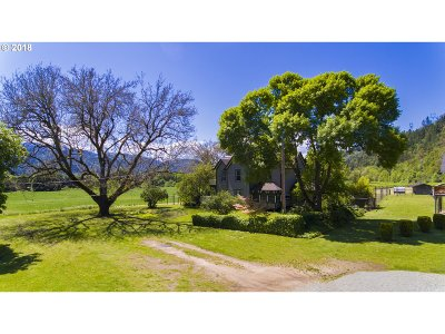 Canyonville Single Family Home For Sale: 8873 Days Creek Cutoff Rd