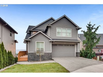 Washougal Single Family Home For Sale: 3522 Z St