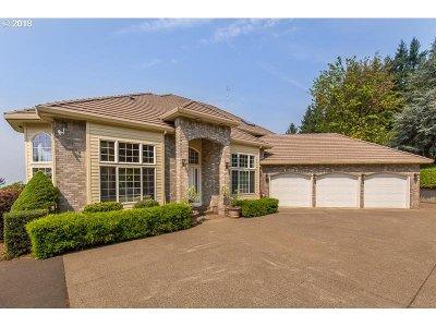 Newberg Single Family Home For Sale: 22000 NE Mountain Top Rd