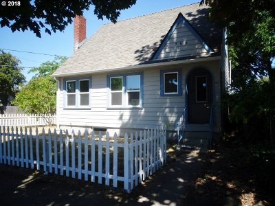Salem Single Family Home For Sale: 755 Norway St NE