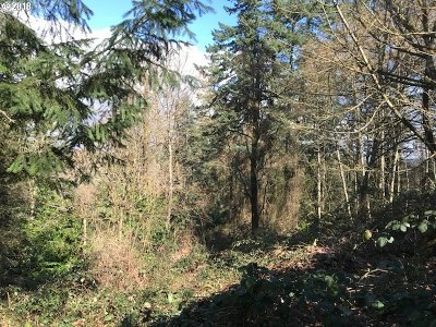 Portland Residential Lots & Land For Sale: 4225 SW Arnold St