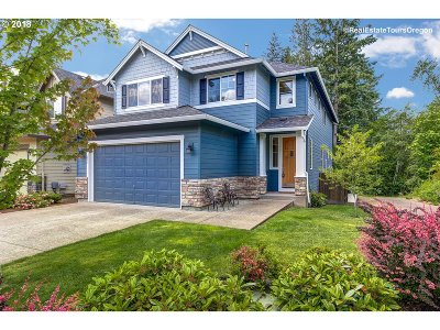 Single Family Home For Sale: 291 SW 208th Ave
