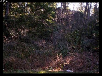 Sandy Residential Lots & Land For Sale: E Tl: 2200 On Sylvan Way