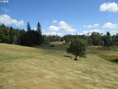 Roseburg Residential Lots & Land For Sale: 533 Tanglewood Ln