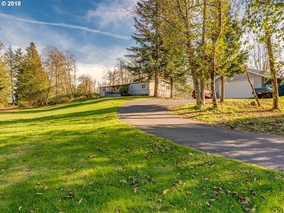 Washougal Single Family Home For Sale: 62 Saints Rd
