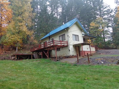Gales Creek Single Family Home For Sale: 57800 NW Wilson River Hwy