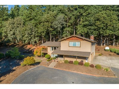 Newberg Single Family Home For Sale: 11700 NE Anna Dr