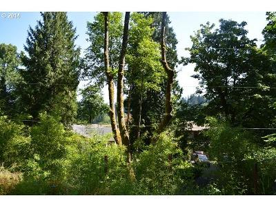 West Linn Residential Lots & Land For Sale: 19381 Nixon Ave