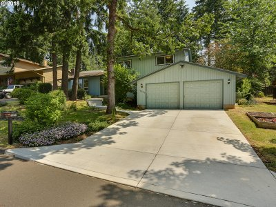 Happy Valley, Clackamas Single Family Home For Sale: 10242 SE 99th Dr