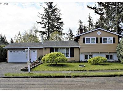 Single Family Home For Sale: 17460 SE Alder St