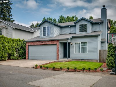 Single Family Home For Sale: 18890 SW Sammy Dr