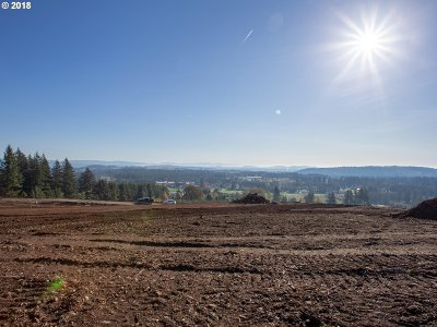 Camas Residential Lots & Land For Sale: NE 264 Ct #Lot 4