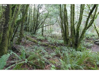 Gold Beach Residential Lots & Land For Sale: Jerrys Flat Rd #399