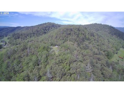 Riddle Residential Lots & Land For Sale: 3860 Canyonville-Riddle Rd