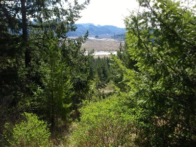 Curry County Residential Lots & Land For Sale: 95550 Tututni Hollow Rd