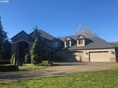 Single Family Home For Sale: 16941 S Clackamas River Dr