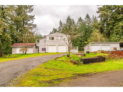 Brush Prairie Single Family Home For Sale: 17839 NE 224th Ct