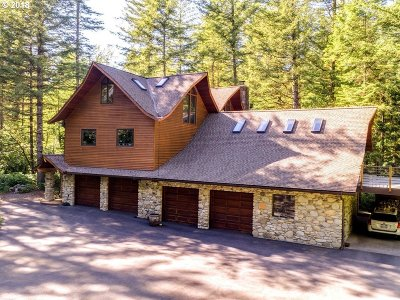 Washougal Single Family Home For Sale: 1101 Mathews Rd