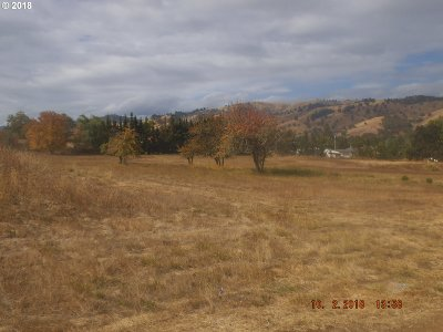 Roseburg Residential Lots & Land For Sale: Little Valley Rd