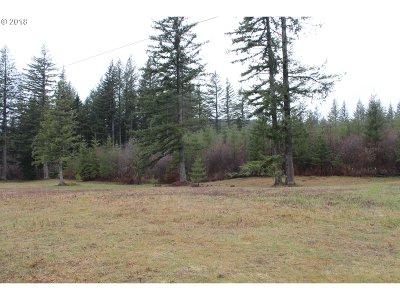 Camas, Washougal Farm & Ranch For Sale: 51 Sec 13 T2n R4ew