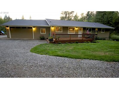 Battle Ground Single Family Home For Sale: 23200 NE 232nd Ave