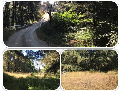 Brookings Residential Lots & Land For Sale: 20352 Whaleshead Rd