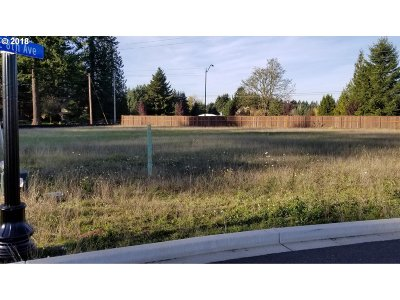 Battle Ground Residential Lots & Land For Sale: 800 NE 29 Way