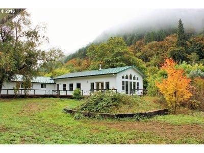 Mapleton Single Family Home For Sale: 9756 Sweet Creek Rd