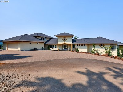 Marion County Single Family Home For Sale: 1091 Vineyard View Way