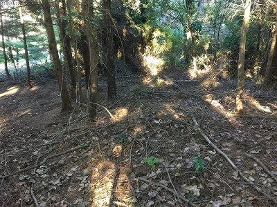Port Orford Residential Lots & Land For Sale: 8th St #6