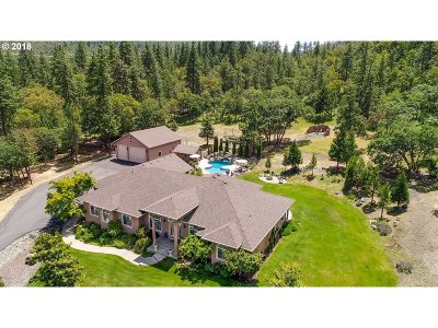Medford Single Family Home For Sale: 3980 Manzanita Heights Dr