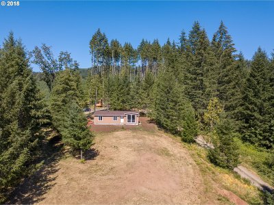North Plains Single Family Home For Sale: 22046 NW Dairy Creek Rd