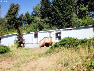 Washougal Single Family Home For Sale: 101 Chamberlain Rd