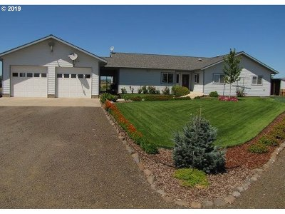 Goldendale Single Family Home For Sale: 317 Fish Hatchery Rd