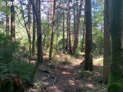 Port Orford Residential Lots & Land For Sale: Old Mill Road