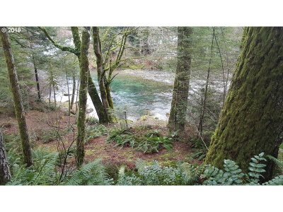 Camas, Washougal Residential Lots & Land For Sale: Christal Ln