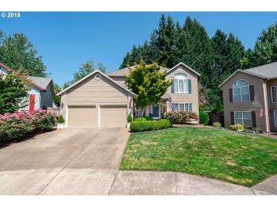 Salem Single Family Home For Sale: 389 Pintail Ct SE