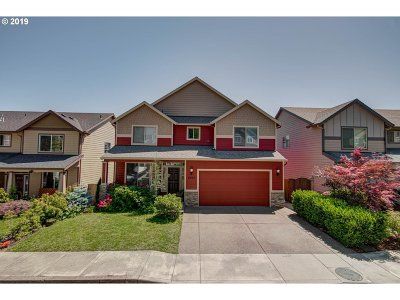 Washougal Single Family Home For Sale: 4802 Z St
