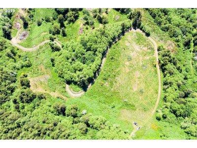 Coos Bay Farm & Ranch For Sale: 94485 Boone Creek Ln