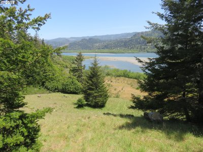 Gold Beach Residential Lots & Land For Sale: 2007 38 N Bank Rogue Rd.